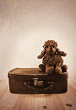 Old toy on a small road suitcase. Stock Image