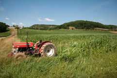 Old tractor. An old tractor in the corner of a french maize field Royalty Free Stock Photo