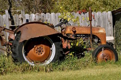 Old tractor with fall foliage Stock Image