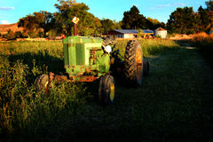 Old Tractor in Field on Farm During Summer Day Stock Image