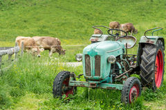 Old tractor on meadow. Beautiful mountain view in the Alps Stock Image
