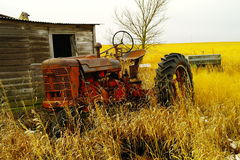 An old tractor next to a shed Stock Image