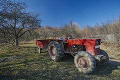 Old tractor in the orchard Stock Image