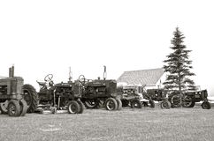 Old tractors lined up(black and white) Royalty Free Stock Photos