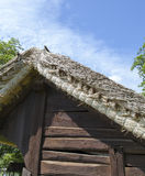 Old traditional barn, shed Stock Photography