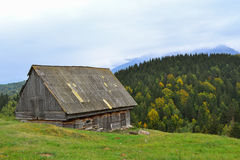 Old traditional hay barn in the mountain area with a background a forest in autumn season Royalty Free Stock Photos