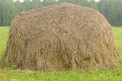 Old traditional hay stacks Royalty Free Stock Photos