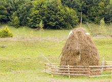 Old traditional haystacks Royalty Free Stock Images
