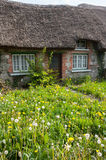 Old traditional Irish cottage with overgrown lawn Royalty Free Stock Image