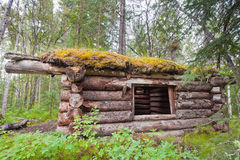 Old traditional log cabin rotting in Yukon taiga Royalty Free Stock Image