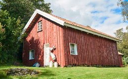 Old traditional Norwegian red barn, around the birch forest Royalty Free Stock Images