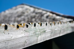 Old traditional roofing Stock Photography