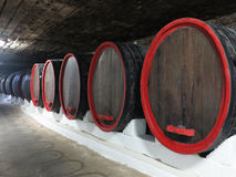 Old traditional wine cellar with big wooden barrels Stock Images