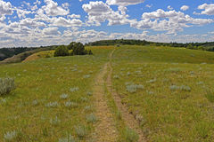 Old Trail Across the Rolling Plains royalty free stock photo