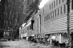 Old train  Stock Images