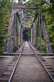 Old Train Bridge. An Old Train Bridge Out In A Redwood Forest in California Stock Image