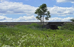 Train Bridge Landscape Royalty Free Stock Photo