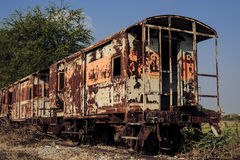 Old train covery by plant and sky Royalty Free Stock Photography