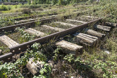 Old train lanes. In Albania Royalty Free Stock Images