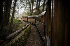 Old train on railway forest Stock Photography