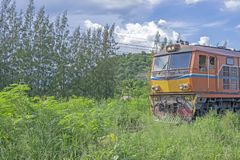 The old train ran through the forest.  stock photos
