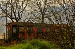 Old train wagon surrounded by trees Royalty Free Stock Photo