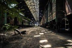 Old trains at abandoned train depot Royalty Free Stock Photos