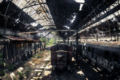 Old trains at abandoned train depot Royalty Free Stock Images