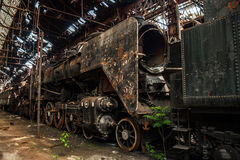 Old trains at abandoned train depot Royalty Free Stock Image