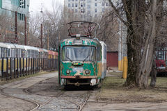 Old tram in the Park. Old tram in the tram Park-depot royalty free stock image