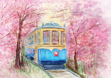 Old tram in spring Stock Photography