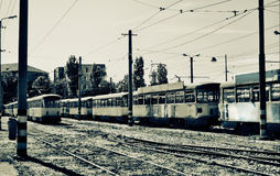 Old Trams. Stationed in depot in Oradea Stock Photo