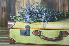 Antique suitcase with flowers. Old travel bag with delicate flowers Stock Images