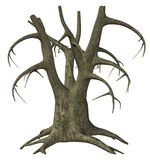 Old tree. 3D render of an old leafless tree Royalty Free Stock Photos