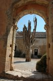 Old tree through an archway. An old interesting structured tree, seen through an archway on Crete at Moni Arcadi Stock Images