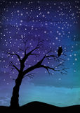 The old tree and the bird on the night sky. Tree crosses on the night sky, digital watercolor painting Royalty Free Stock Photos