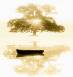The old tree and the boat Royalty Free Stock Image