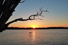Sunset at Lake Macquaire stock photos