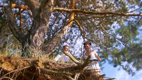 Old tree in front of young couple walking with bycicles in forest. Bottom view stock footage