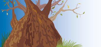 Old Tree (illustration) Royalty Free Stock Photo