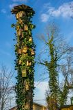 An old tree with many bird houses in sunshine. And blue sky Royalty Free Stock Photography