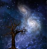 Old Tree. Old leafless tree. Merging galaxies in the sky Royalty Free Stock Images