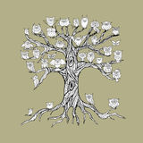 Old tree with owls for your design Royalty Free Stock Photos