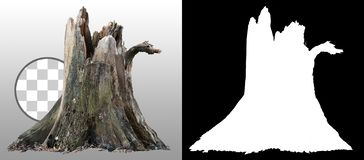 Cut out tree stump