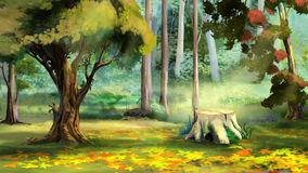 Old Tree Stump in the Autumn Forest. Beautiful view of Old Tree Stump in the Autumn Forest. Digital Painting Background, Illustration Stock Photos