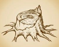 Old tree stump. Vector sketch royalty free illustration