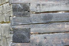 Old tree trunk wall Stock Images