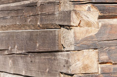 Old tree trunk wall Stock Photo