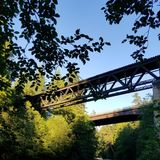 Old Tressel bridge. Old bridge found on a walk through the Forrest near a river stock images