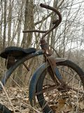Old Tricycle In Forest Stock Photos